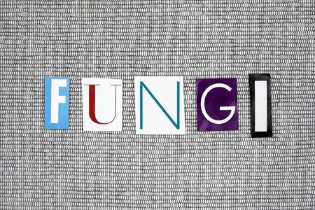 fungi: fungi word on gray background