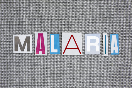 malaria: malaria word on gray background
