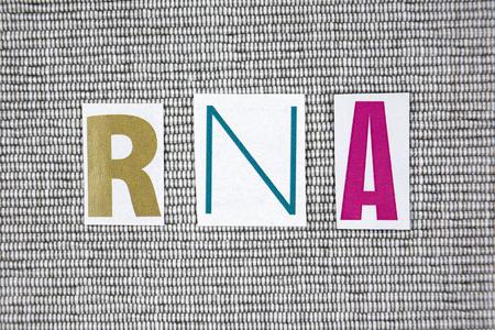 rna: RNA (ribonucleic acid) acronym on gray background