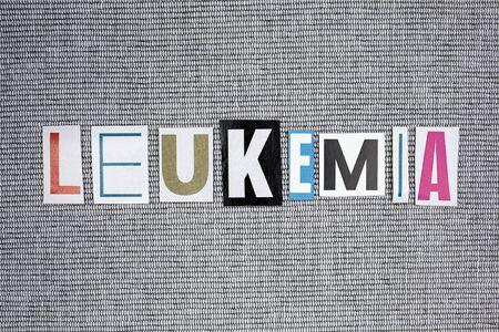 leucemia: leukemia word on gray background