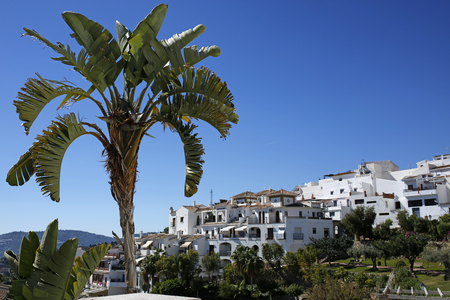 Frigiliana with palm tree in the background, Andalusia, Spain