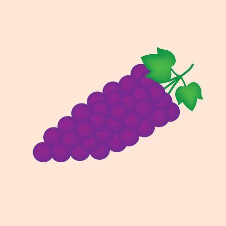 Bunch of wine fruit illustration. Illustration
