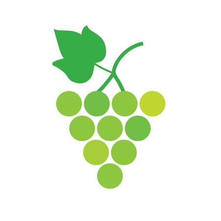 bunch of white wine grapes- vector illustration Illustration