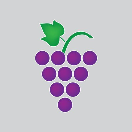 bunch of wine grapes- vector illustration
