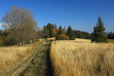 path in autumn field in Gorce Mountains, Poland Stock Photo