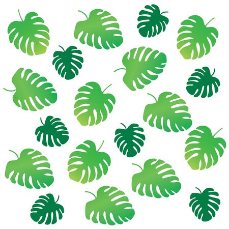 palm tree leaves, Monstera tropical plant background- vector illustration
