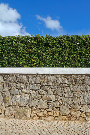 old stone wall, hedge and blue sky