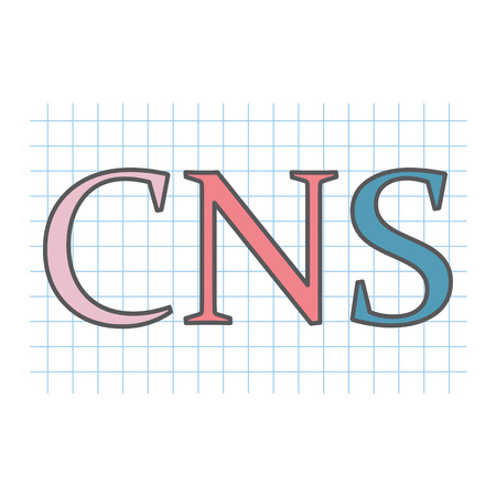 CNS (central nervous system) acronym written on checkered paper sheet- vector illustration