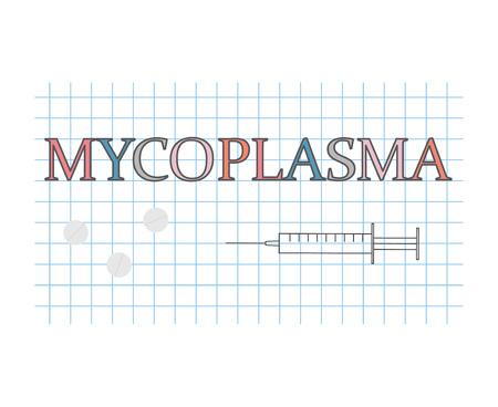 mycoplasma word on checkered paper sheet- vector illustration Stock Illustratie
