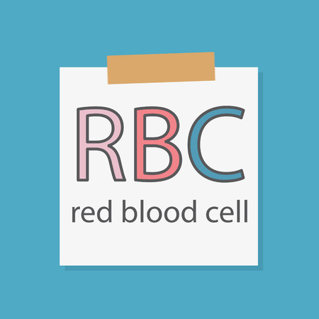 RBC Red Blood Celll acronym on a notebook paper- vector illustration