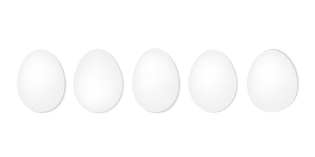 white eggs in a row- vector illustration Stock Vector - 117121699