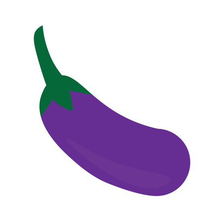 eggplant icon- vector illustration