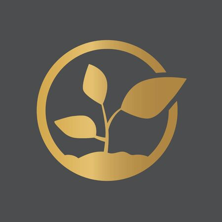 golden young plant icon- vector illustration Stock Illustratie