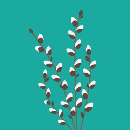 willow catkins twigs- vector illustration Illustration