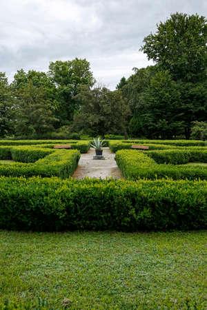 formal garden with green trimmed bush hedges