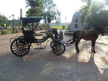 horse drawn carriage: Horse and Buggy