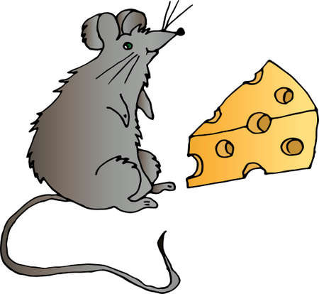 A small drawn gray rat with a long tail, with a slice of cheese on a white background. Vector graphics.
