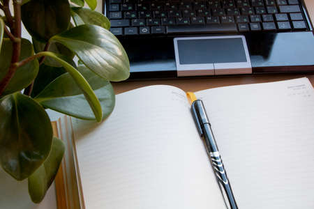 Open notebook with place for text, plants, pen and open notebook on a white background.