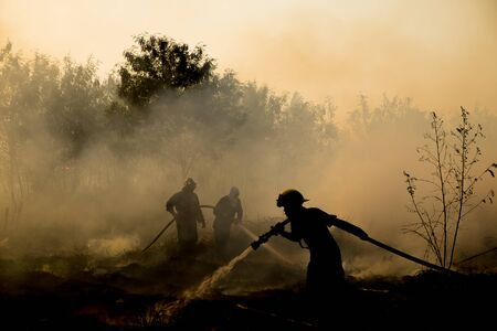 wildfire: Smoke field and fireman after wildfire sihouette. Stock Photo