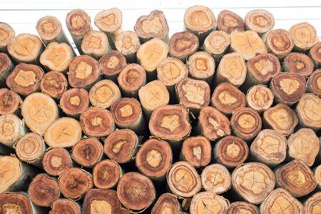 Closeup of a pile cut timber