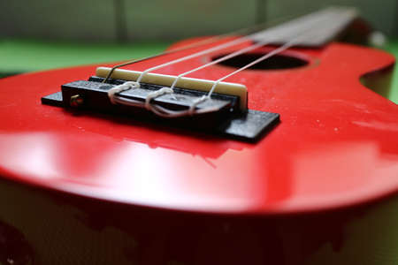 Red Ukulele, strapped, Hawaiian instrument, flat on a green background.Close up