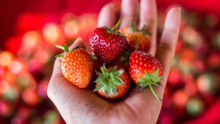 Strawberry. Fresh organic berries macro. Fruit background