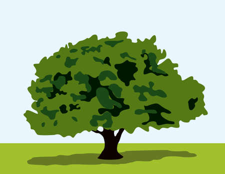 Tree with shadows on grass Vector