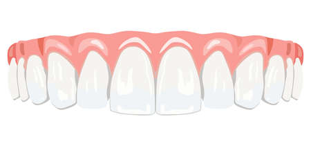 in a row: The top row of white teeth