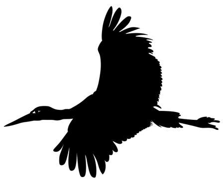 wading: Silhouette of a stork in flight on a white background