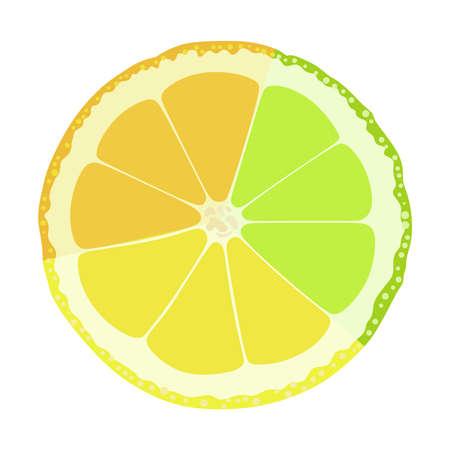 Lime, lemon, orange on a white background