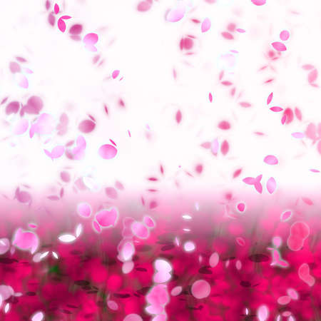 drifting: artwork of cherry blossom petals swirling in the breeze Stock Photo
