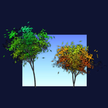 changing seasons: scene of two trees depicting the changing seasons