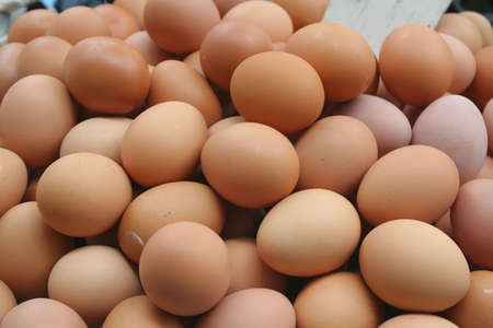 protein source: eggs - a vital source of protein Stock Photo