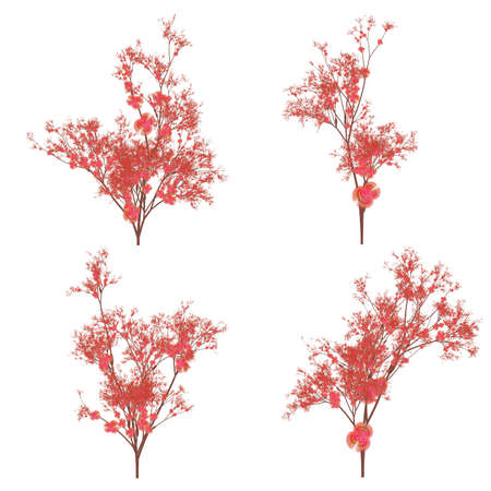 flourishing: Variations of a cherry blossom plant