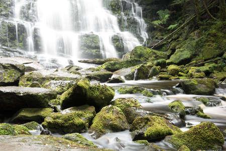 Bella acqua potabile del lavandino in Tasmania Archivio Fotografico - 80852398