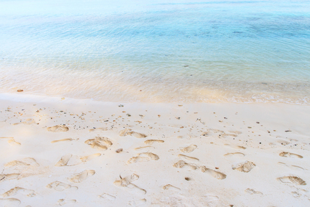 impermanent: Footprints in the sand on beach a beautiful