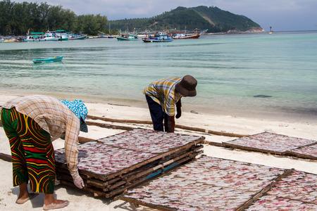 Droge pijlinktvis Traditionele in de zon in een idyllische vissersdorp, Thailand Stockfoto