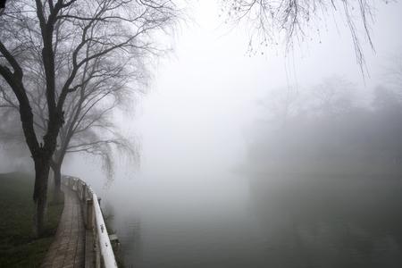 Beautiful city view of sapa city with fog in morning, sapa, vietnam