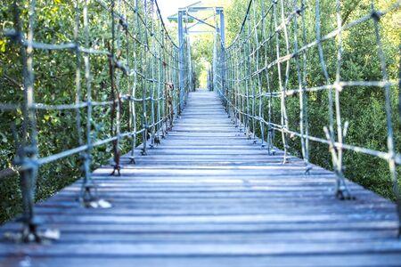 Suspension bridge in green forest, Bang Pu Recreation Center, Samut Prakan Province, Thailand