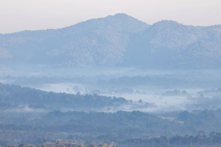 Misty landscape with Asian tropical rainforest in Khao Yai National Park in Thailand Stockfoto