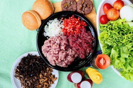 Homemade hamburger with beef or pork meat and Insect with lettuce and cheese, vegetables, sauce and placed on table Zdjęcie Seryjne