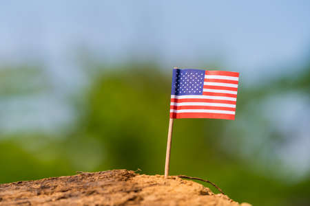 toothpick: Tooth pick with small flag on wooden with nature background Stock Photo