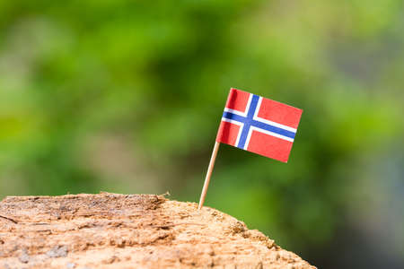norway flag: Tooth pick with small flag on wooden with nature background Stock Photo