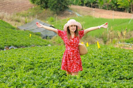 Asian women wearing red floral dresses, Asian women wearing red floral dresses, taking pictures with nature ,  Asian women wearing red floral dresses, posed for pictures with Strawberry Farm.