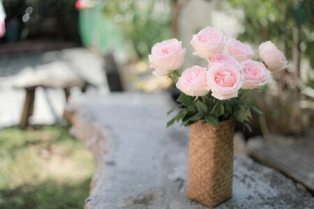 Pink roses in a vase, pink roses with intelligent dogs.