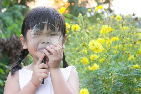 Little asian girl uses a magnifying glass to look at insects , Outdoor portrait , Thailand. Imagens