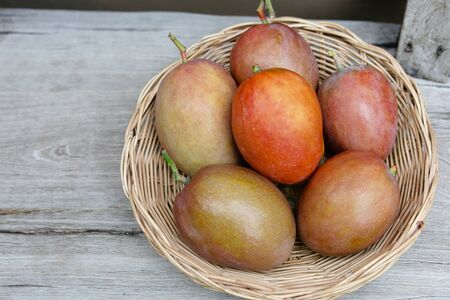 Cute Asian girl with delicious mangoes, A lovely Asian girl with delicious purple mango.