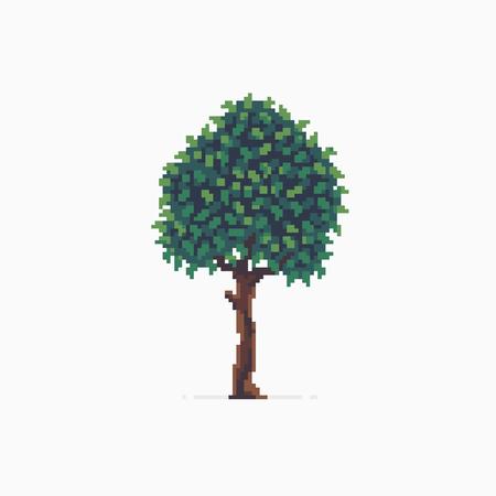 Pixel art tree isolated on white background Illustration