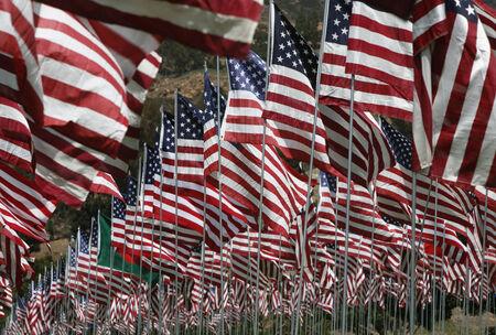 U.S. Flags at September 11 Memorial display