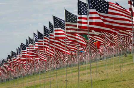 september 11: Rows of U.S. Flags at September 11 display